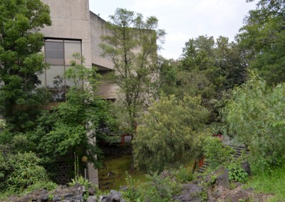 Vista de la sala Nezahualcóyotl