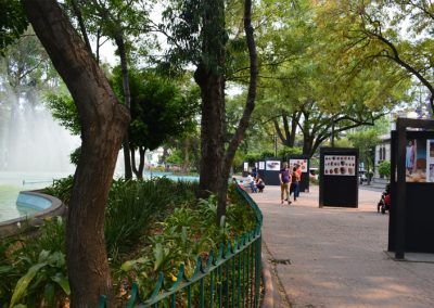 Plaza Luis Cabrera, lugar habitual de Burroughs   Claudia Sánchez Rod
