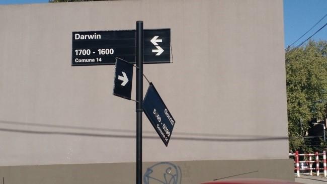 La evolución de la calle Darwin